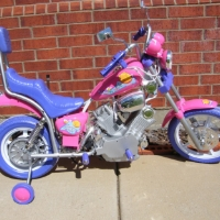 Pink Girls 6 Volt Electric Bicycle Motorcycle